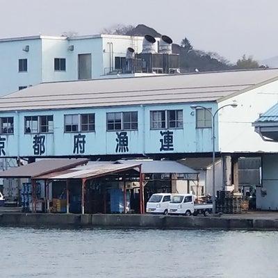 尾鷲天満浦光栄丸筏釣果の記事に添付されている画像