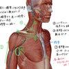 簡単むくみケア|むくみ 血流改善 セルフケアの画像