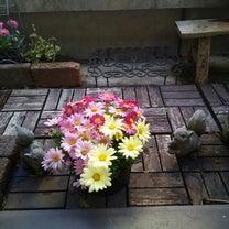 花と緑。の記事に添付されている画像
