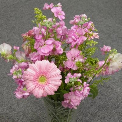 花に感じる春 3/11の記事に添付されている画像