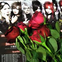 大好きな赤いバラの記事に添付されている画像