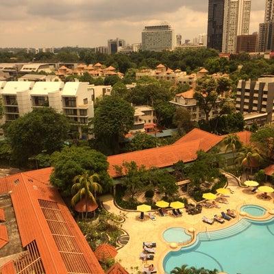 シンガポール 1日目〜の記事に添付されている画像