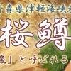 幻の魚!?青森の隠れた逸品☆青森県産『桜鱒』の画像