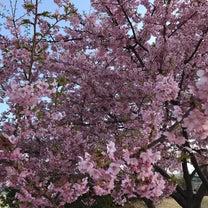春休みまじかの記事に添付されている画像
