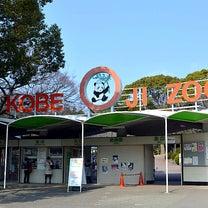 来週は王子動物園が入園無料!!の記事に添付されている画像