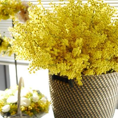 【レッスンレポ】春のミモザレッスン♪の記事に添付されている画像