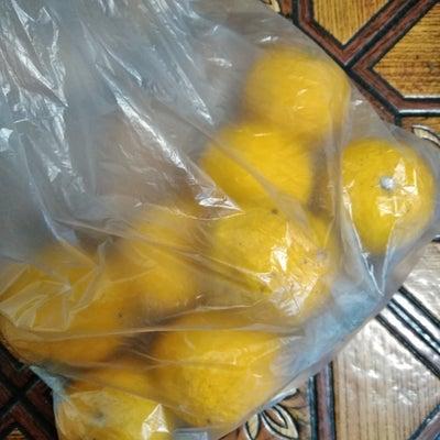 柚子 捨てました。の記事に添付されている画像