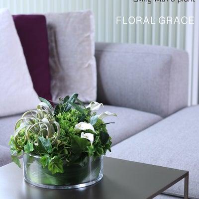 【ご予約開始】Interior Green №4の記事に添付されている画像