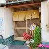 ✨和食 寿司「もりかわ」     アロチ  和歌山の画像