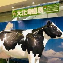 大北海道展に行くの記事に添付されている画像