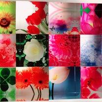 人生のサイクル  誕生花セラピーの記事に添付されている画像