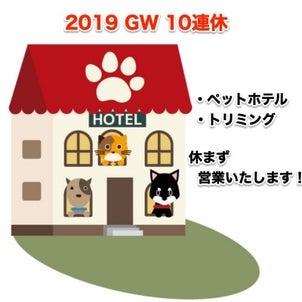 ご予約受付中!2019GW 10連休 ペットホテル 名古屋の画像