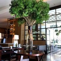『東京』パレスホテルでランチの記事に添付されている画像
