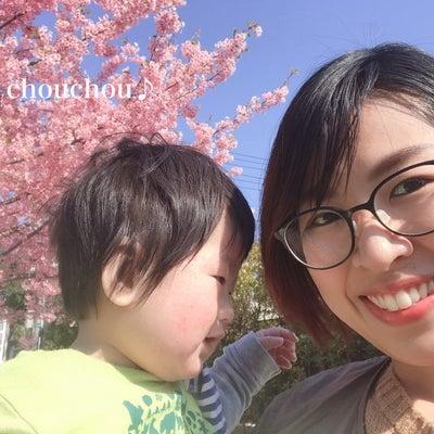 子どもの予防接種どうする?の記事に添付されている画像
