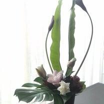 八重咲きのユリでモダンスタイルの記事に添付されている画像