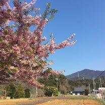 25回目!本宮山  今後の目標とか練習方法など・・の記事に添付されている画像