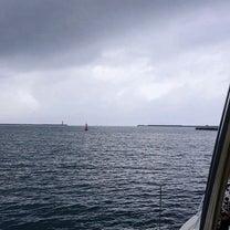 沖縄  ホエールウォッチングの記事に添付されている画像