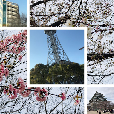 名古屋への記事に添付されている画像