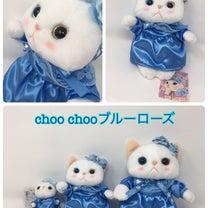 choo choo本舗 ブルーローズ猫、ピーチ猫入荷!の記事に添付されている画像
