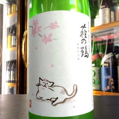 """萩の鶴 純米吟醸生原酒 """"さくら猫ラベル"""" 入荷の記事に添付されている画像"""