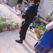 お庭〜の記事に添付されている画像