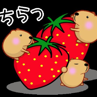 きゃぴばら【春】・・・(*^_^*)の記事に添付されている画像