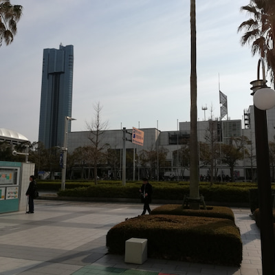 仲良し7人で、花見川区へ!勝利の満開桜の記事に添付されている画像