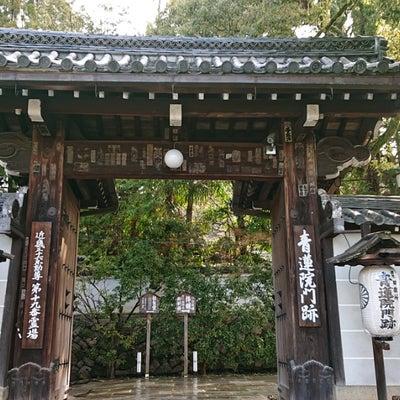 そうだ!!京都で。。。の記事に添付されている画像