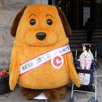 神戸 スタバの記事に添付されている画像