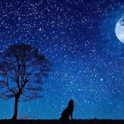 満天の星空をみてみる*無・邪気のススメ*の記事に添付されている画像