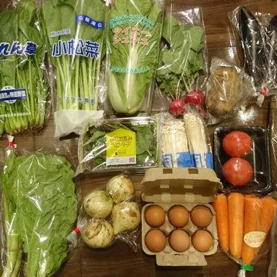 ふるさと納税2018熊本県玉東町ていきびん旬の野菜13種類4種の食材セットの記事に添付されている画像