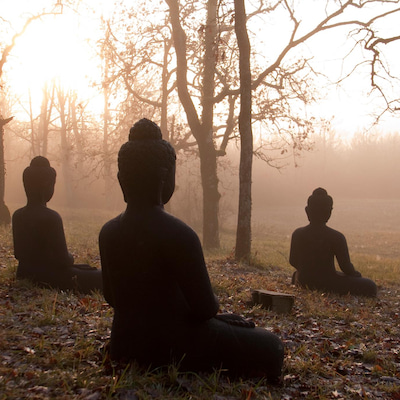今ここに鎮まる瞑想の記事に添付されている画像