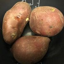 炊飯器で焼き芋の記事に添付されている画像