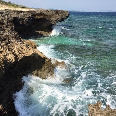 沖縄4日目の記事に添付されている画像