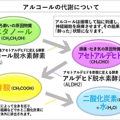 アルコール遺伝子検査の記事に添付されている画像