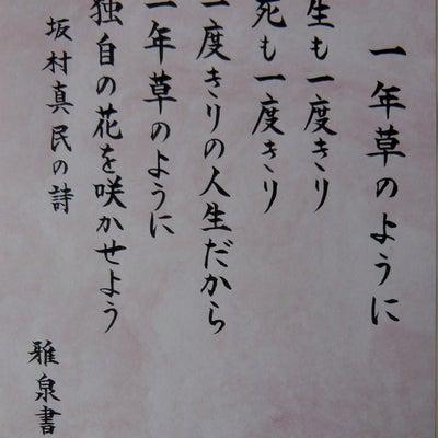 『坂村真民』さんの詩 第161弾 ~《水彩8作品付き》~の記事に添付されている画像