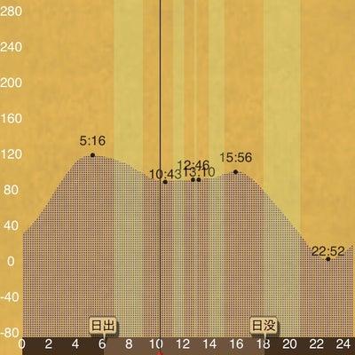 X JAPAN 「紅 」的なエビ撒き釣りの記事に添付されている画像
