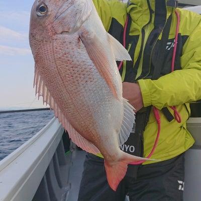 3月17日(日)  伊達丸 本日の釣果の記事に添付されている画像