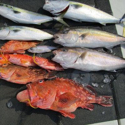 3月17日近海ジギングの記事に添付されている画像