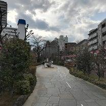 桜はまだかいな〜の記事に添付されている画像