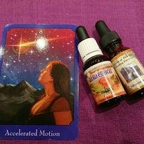 4月14日(日)Love&Light出展者のご紹介⑭  Healingcompaの記事に添付されている画像