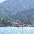 #厳島神社の画像