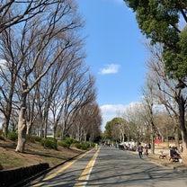 駒沢散歩(^^♪の記事に添付されている画像