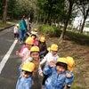 乳児組☆お散歩(*^^*)の画像