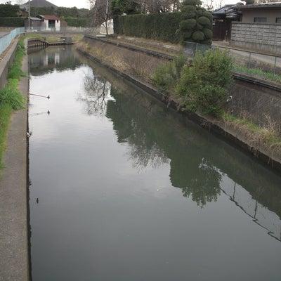 2019/3/17 江戸川釣行の記事に添付されている画像