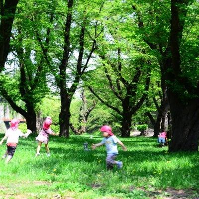 【幸せと健康の秘訣】は宮沢賢治に学べの記事に添付されている画像