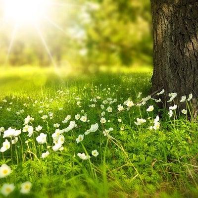 春休みもやります!『早起き英語』の記事に添付されている画像