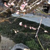 #128 東日本大地震って。。。の記事に添付されている画像