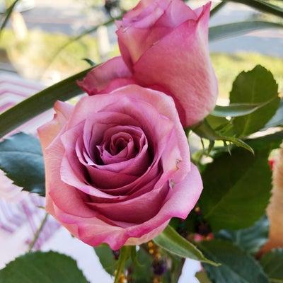 ギフトの日に届きました♡千夜一夜物語~アラビアンナイト~薔薇の浄化❤︎の記事に添付されている画像