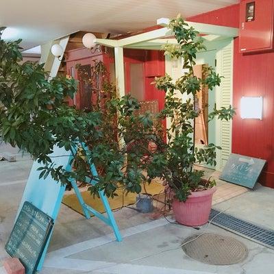 ✨「カラバ ティー」県庁 スマイルホテル裏 和歌山の記事に添付されている画像
